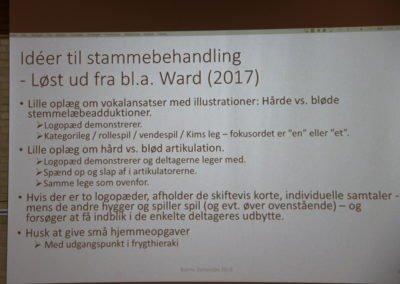 Et af Bjarne Dammsbos slides